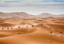 rally Merzouga de motos y quads en Dakar series